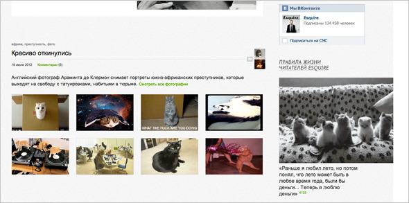 Котировка сайтов: Как заполнить любой сайт мигающими котами. Изображение №14.