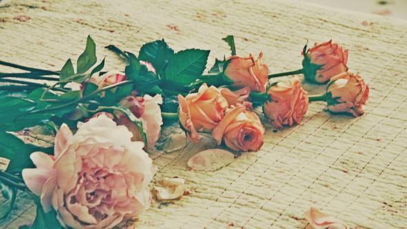 "Bakcstage бренда ""Rose&Petal"" AW-2012. Изображение № 9."