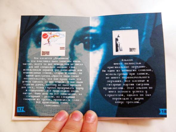 Самодельная книжка о творчестве Дельфина. Изображение № 16.