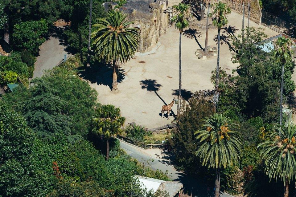 Фото: промзона Мельбурна, снятая свертолёта. Изображение № 15.
