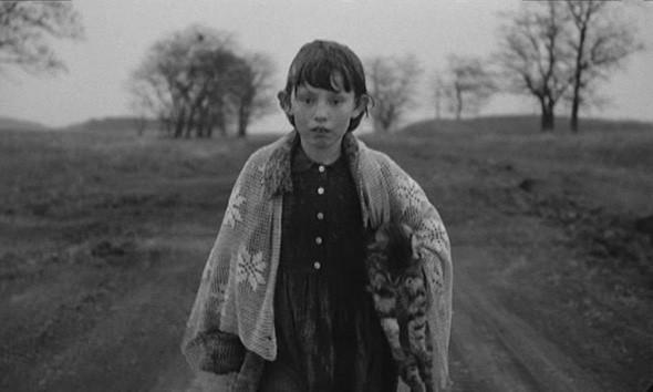Маша Краснова-Шабаева, иллюстратор. Изображение № 7.