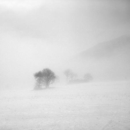 Туманные фотографии. Изображение № 3.