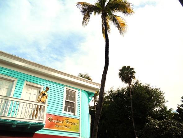 Спешите жить медленно. Ки-Уэст (Key West). Изображение № 7.