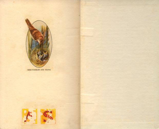 Мудборд: Пол Уиллоуби, креативный директор журнала Little White Lies. Изображение № 191.