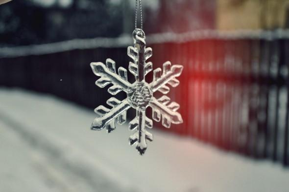 Моя зима. Изображение № 1.