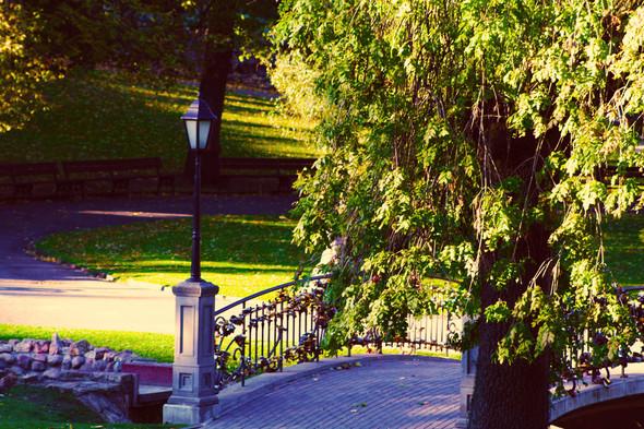 Золотая осень в Риге. Изображение № 2.