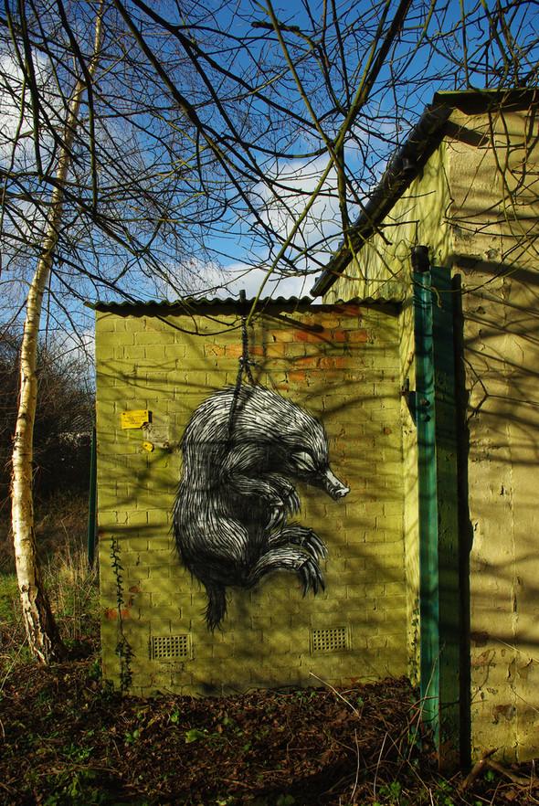 Животный стрит-арт от бельгийского граффитчика ROA. Изображение № 41.