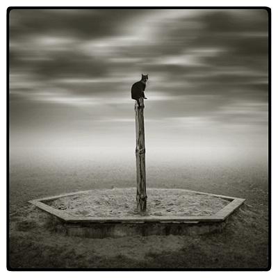Польский фото-художник Michal Giedrojc. Изображение № 4.
