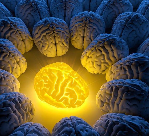 Чтобы помнили: как работает наша память и что изменит её в будущем. Изображение № 2.