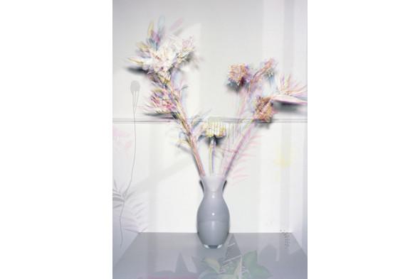Jaap Scheeren and Hans Gremmen Fake Flowers in Full Color. Cерия, состоящая только из фотографий неживых объектов. Изображение № 27.