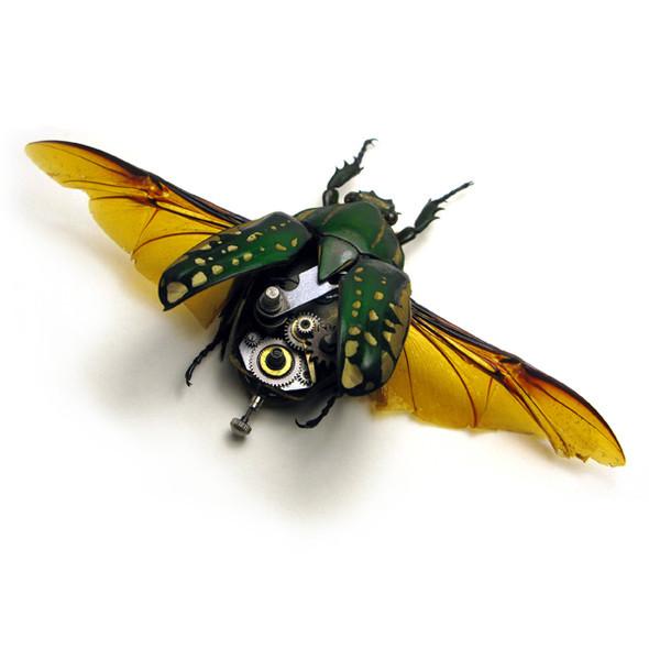 Стимпанк насекомые от Mike Libby. Изображение № 7.
