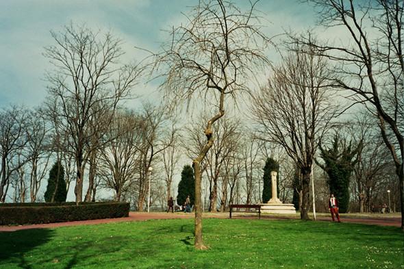 Парк рядом со смотровой площадкой. Изображение № 43.