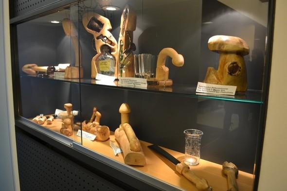 Фаллологический музей вернулся в Рейкьявик. Изображение № 2.