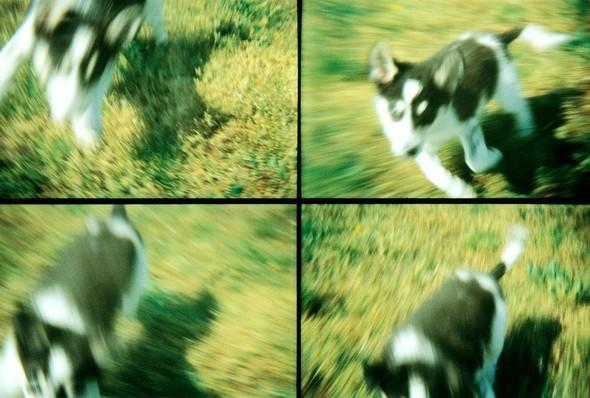 Camera! Lights! ACTION! sampler. Изображение № 34.