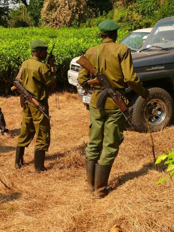 Конго: женщины, оружие, бытовуха. Изображение № 3.