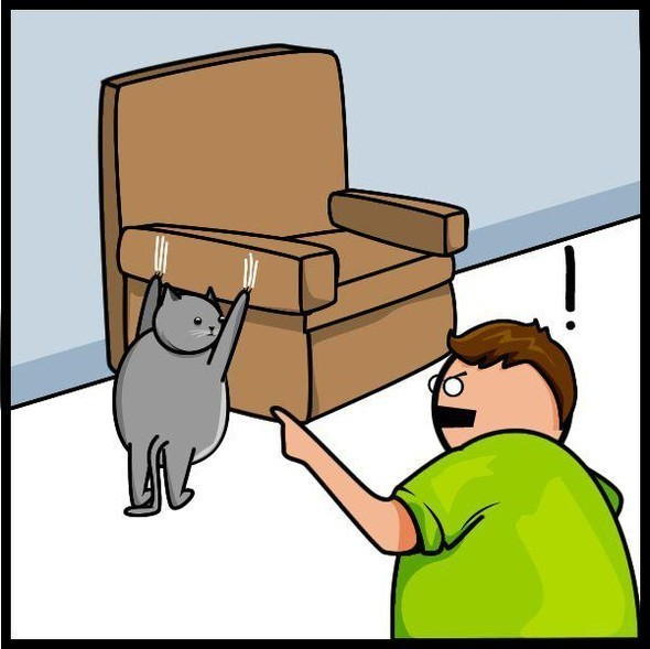 Cat vs. Internet. Изображение № 19.