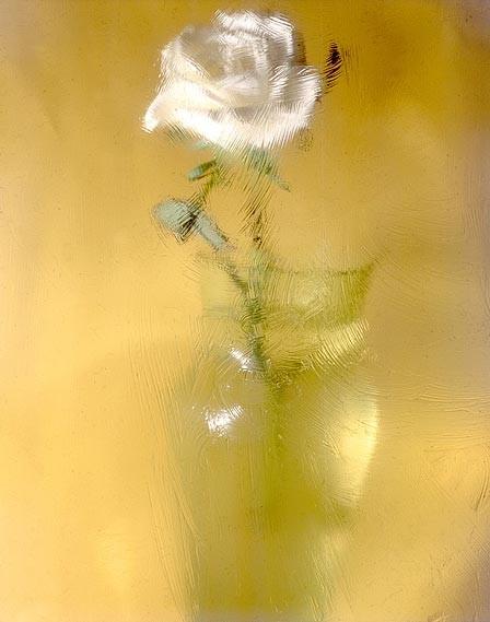 Стеклянные души фотографий Олега Каплана. Изображение № 31.