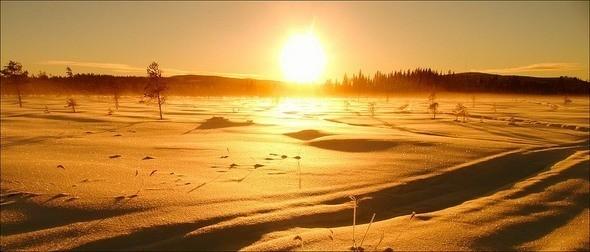 Изображение 12. Выходные в шведском лесу.. Изображение № 12.