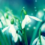 Тренды «Весна-лето 2012» - Мартовские оды. Изображение № 2.