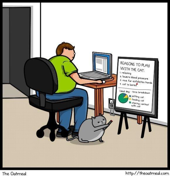 Cat vs. Internet. Изображение № 9.