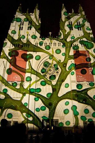Джерри Хофстеттер иллюминировал Вашингтонский собор. Изображение № 13.