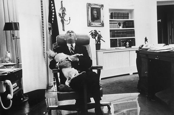 Лучшие друзья президентов. Изображение № 9.