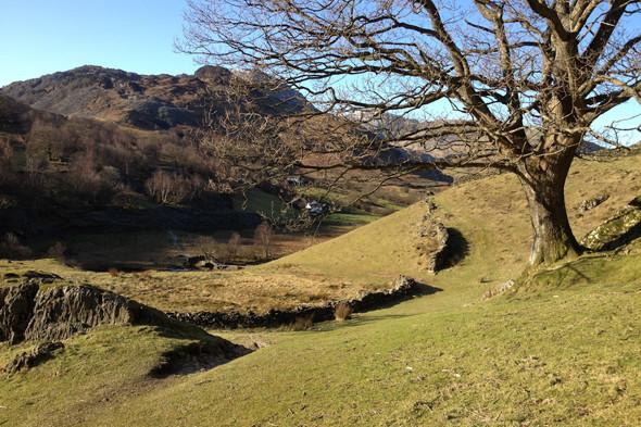 Великобритания: Водопады, тишина, сидры и прогулки по Озерному краю. Изображение № 16.