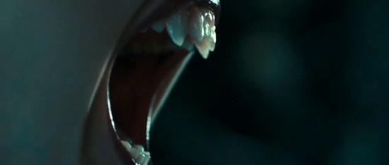 Премьеры: Убийцы вампирш-лесбиянок. Изображение № 5.