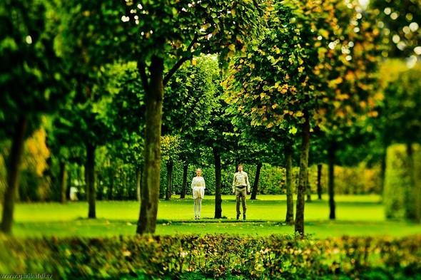 Любовь ботаника (попса) - non stop. Изображение № 4.