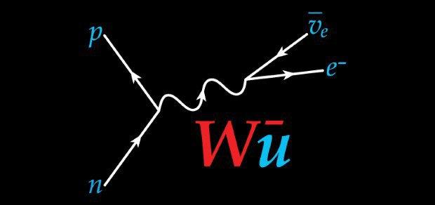 Дизайнер создал более 50 логотипов известных учёных. Изображение № 53.