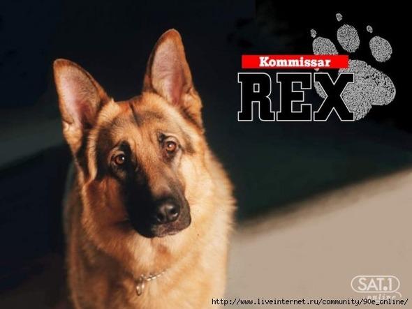 10 самых известных собак в истории по версии журнала WOW!. Изображение № 3.