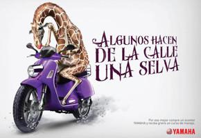 В мире животных: Герои «Мадагаскара» в мемах, рекламе и видеороликах. Изображение № 10.