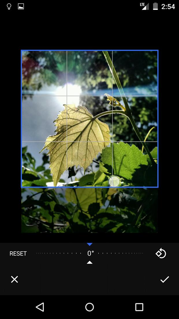 СМИ выложили скриншоты приложения Google для фотографий . Изображение № 20.