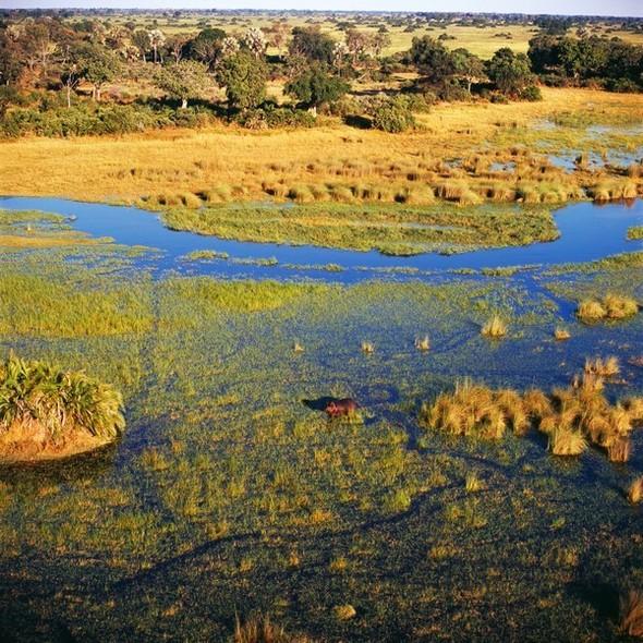 Ботсвана. Изображение № 21.