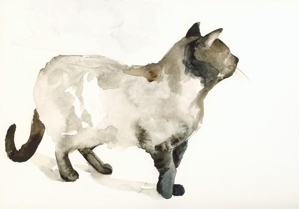 Изображение 3. Amber Alexander - животные, сияющие акварелью.. Изображение № 3.