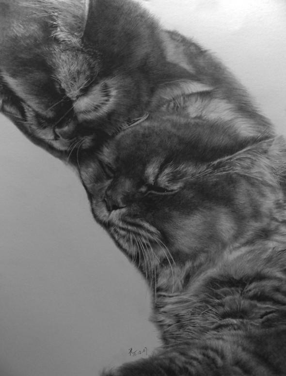 Paullung.и его коты. Изображение № 22.