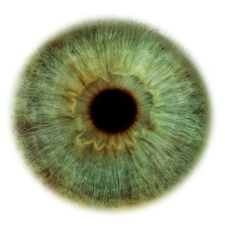 Фотограф Rankin — Eyescapes. Изображение № 12.