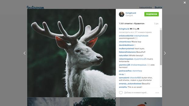 Instagram обновил дизайн веб-версии. Изображение № 2.