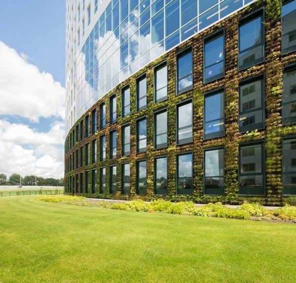 Офисы мира: Голландия. Изображение № 5.