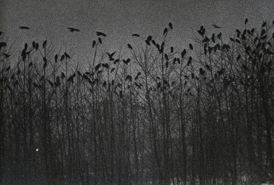 Унылые открытки: В чём главная проблема пейзажной фотографии. Изображение № 23.