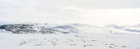 Остров Туле Тиины Итконен. Изображение № 6.
