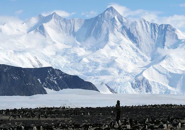 Изображение 7. Антарктида: суровая красота.. Изображение № 7.