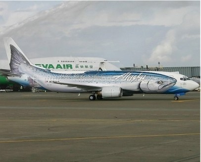 Оригинальное оформление самолетов. Изображение №7.