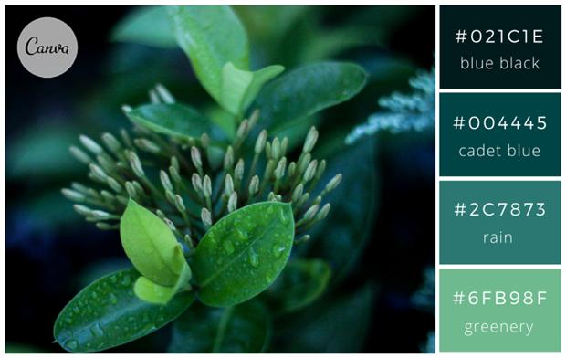 Сервис Canva предложил 100 удачных сочетаний цветов. Изображение № 7.