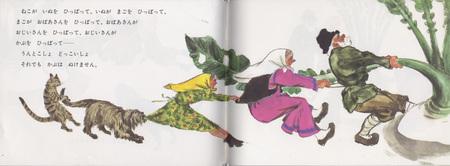 Репка пояпонски. Изображение № 16.