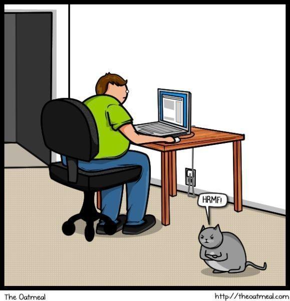 Cat vs. Internet. Изображение № 15.