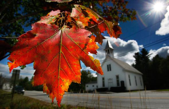 Осень постучала в двери. Изображение № 35.