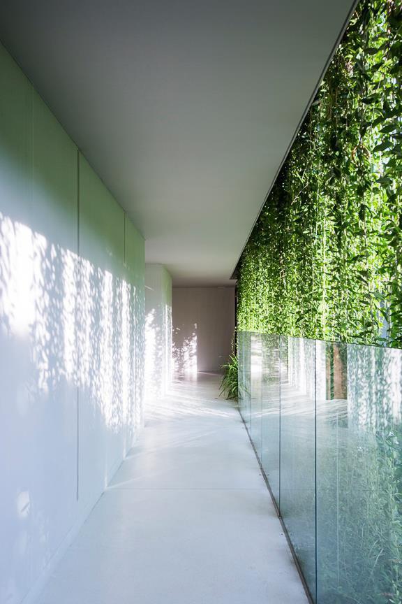 Архитектура дня: белый спа-центр во Вьетнаме с растениями на фасаде. Изображение № 35.