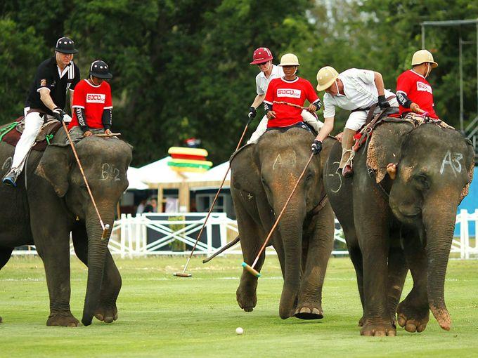 Наоми Кэмпбелл судится с газетой из-за поло на слонах. Изображение № 1.