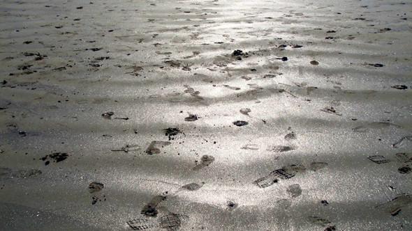 Пляж в Динаре. Изображение № 44.